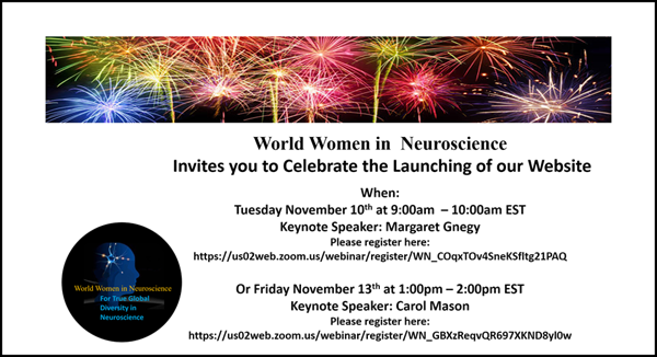 Flyer for the WWN website launch on 10 November 2020